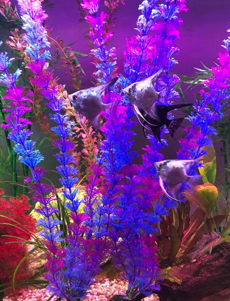 "20"" Tall Plastic Aquarium Plants Tank Decor - 2 Blue 